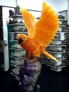 Legep Bird